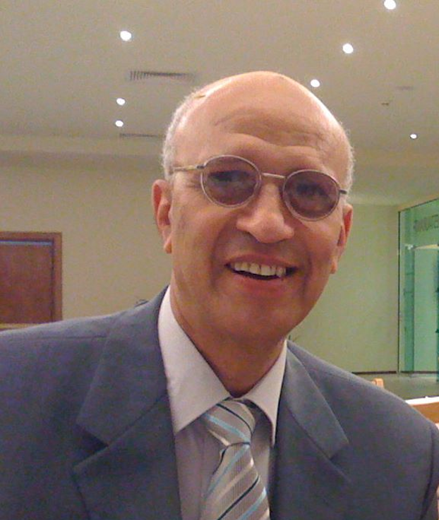 Prof. Adel Abdelaziz